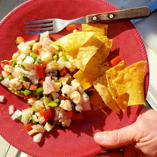 Belize-Guide-Co-ceviche-chips
