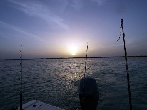 Belizer-Guide-Co-deep-sea-fishing-sunset